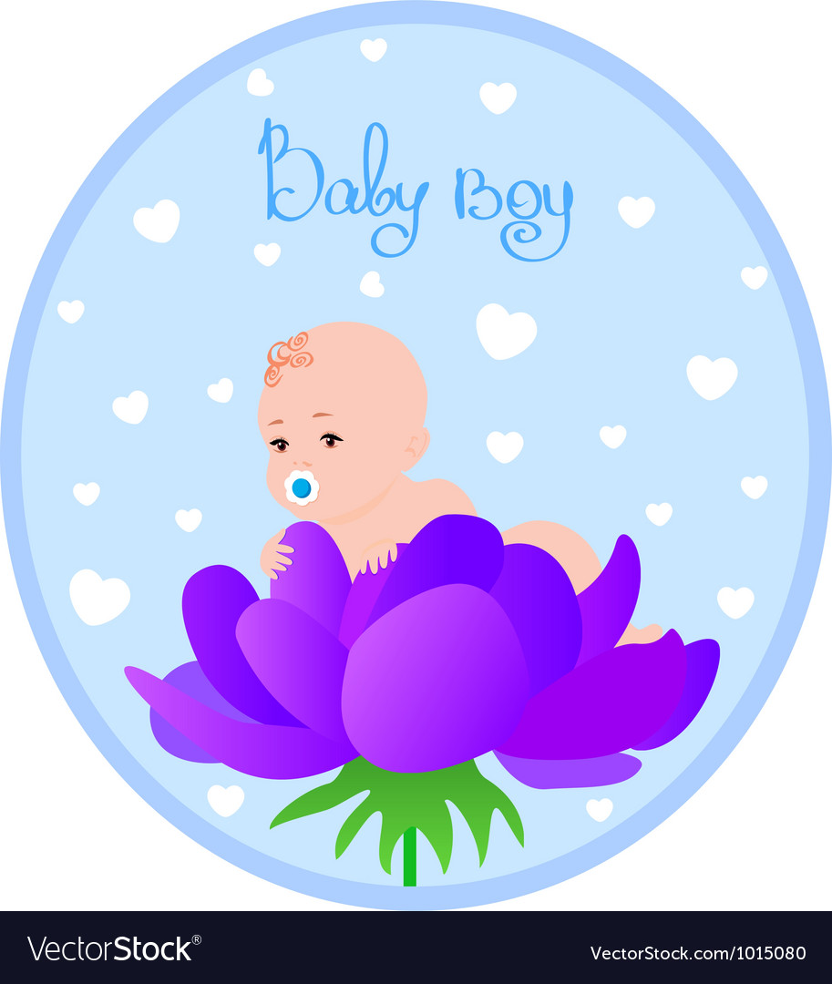 Baby boy vector image
