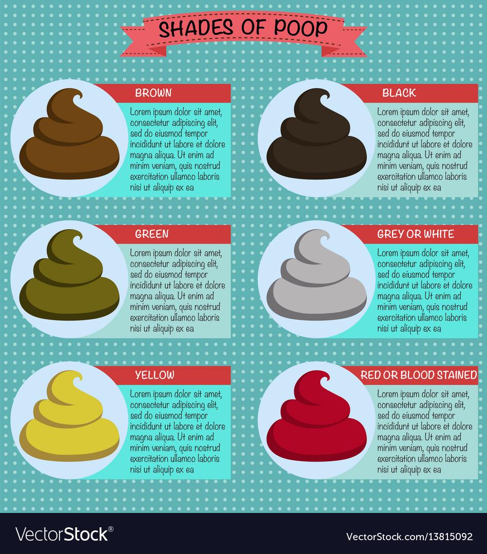 Shades color of poop healthy concept vector image