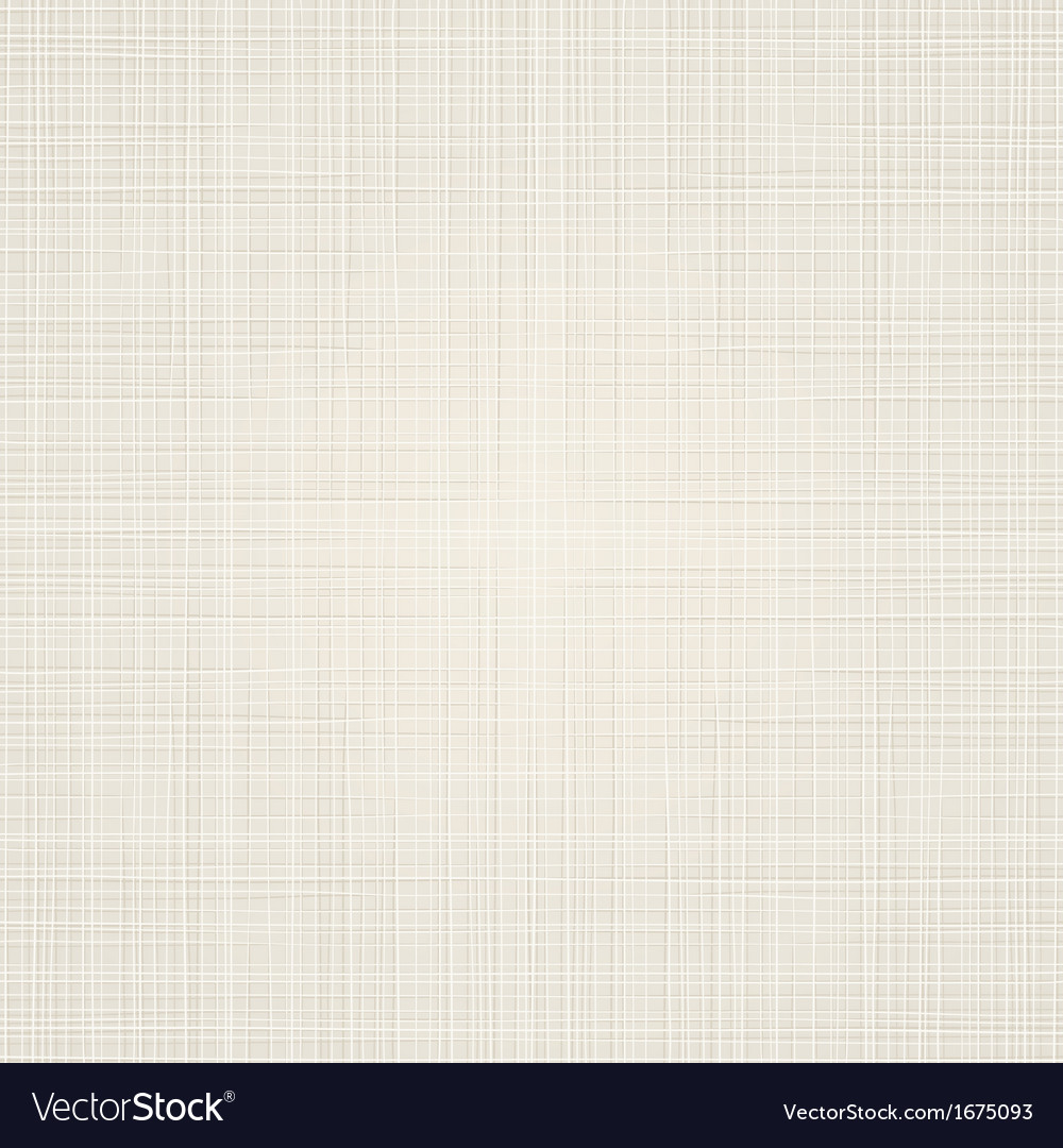 Fabric Texture Background vector image