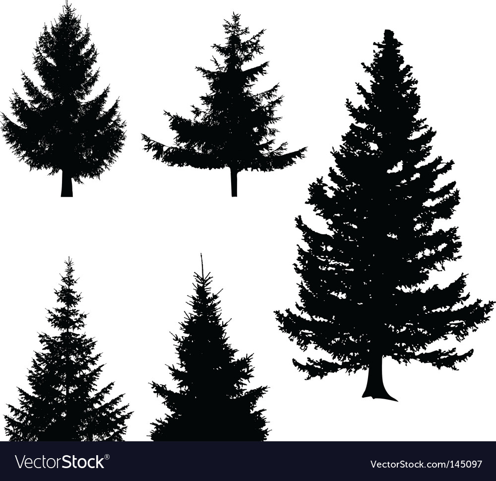 christmas tree royalty free vector image vectorstock