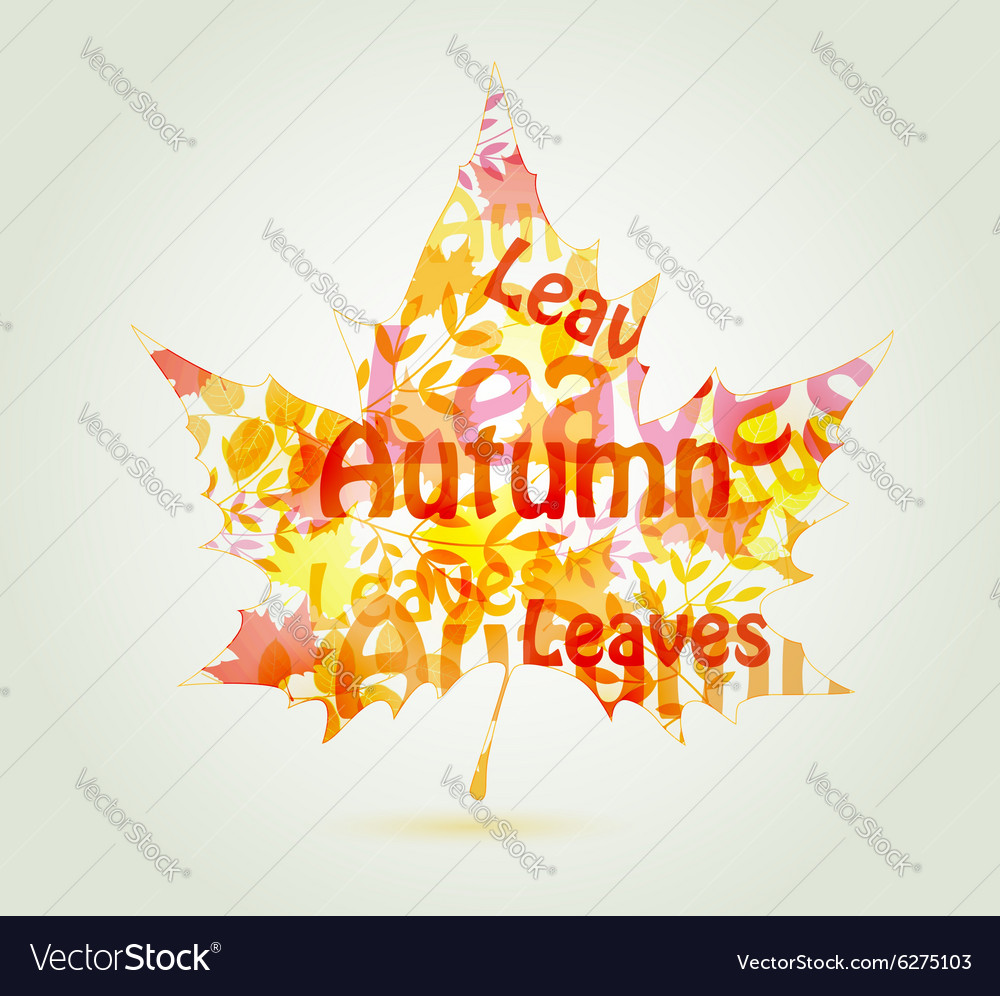 Abstract autumn maple leaf vector image
