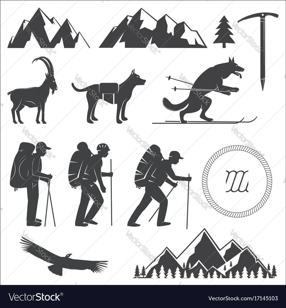 Set of alpine club icon vector image