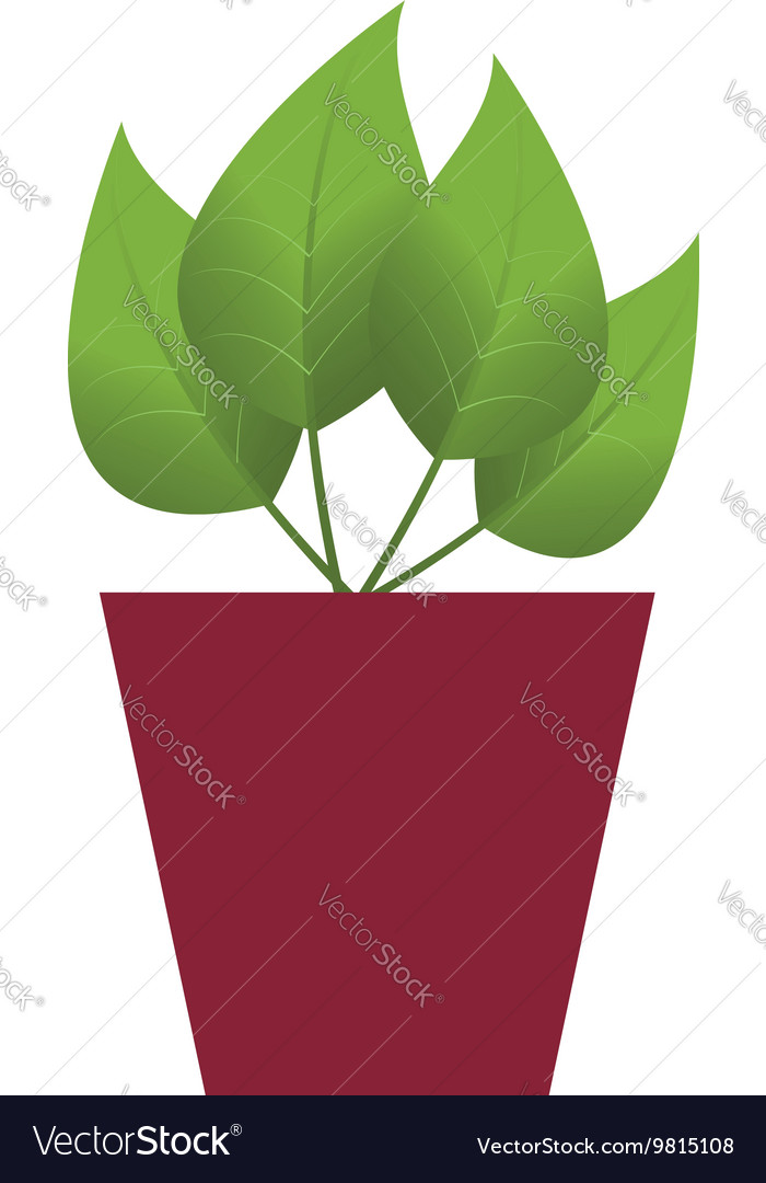 Pot with flower vector image
