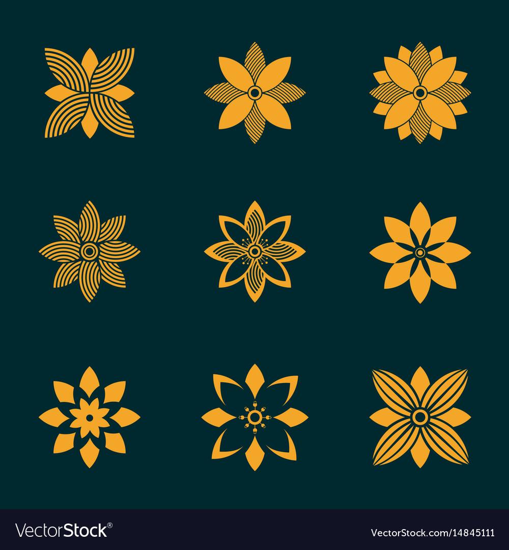 Set of ornamental emblem flowers symbol vector image