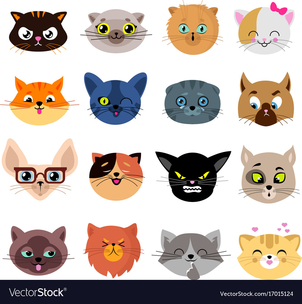 Heads of cute cat characters with different vector image