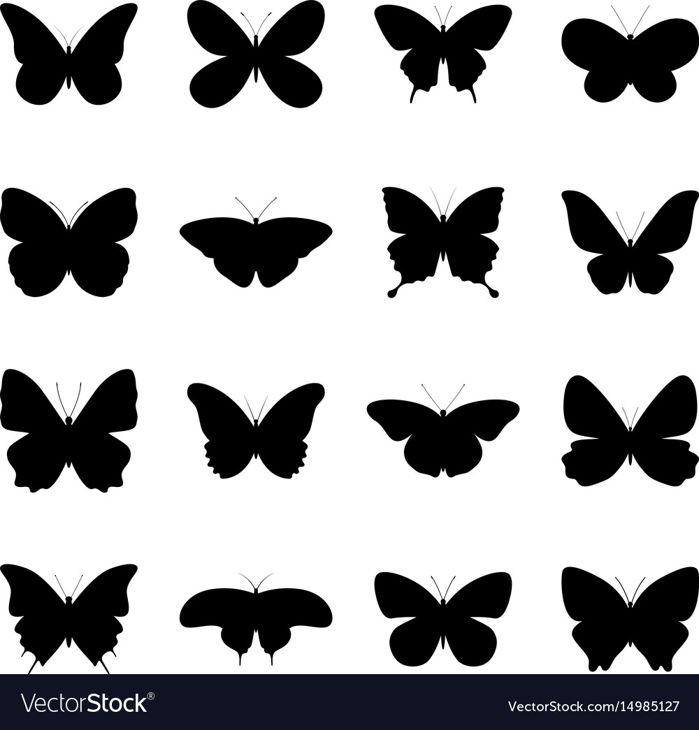 Set of silhouettes of butterflies vector image
