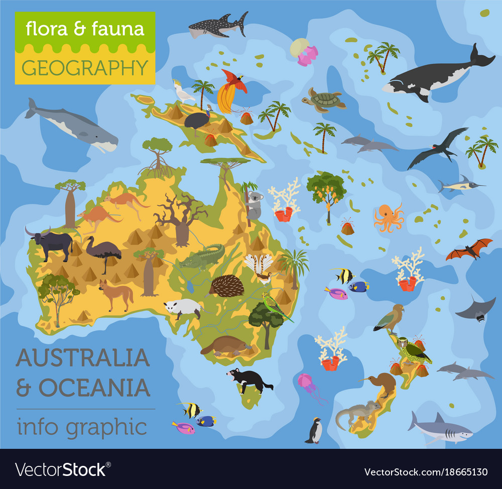 Australia and oceania flora and fauna map flat Vector Image