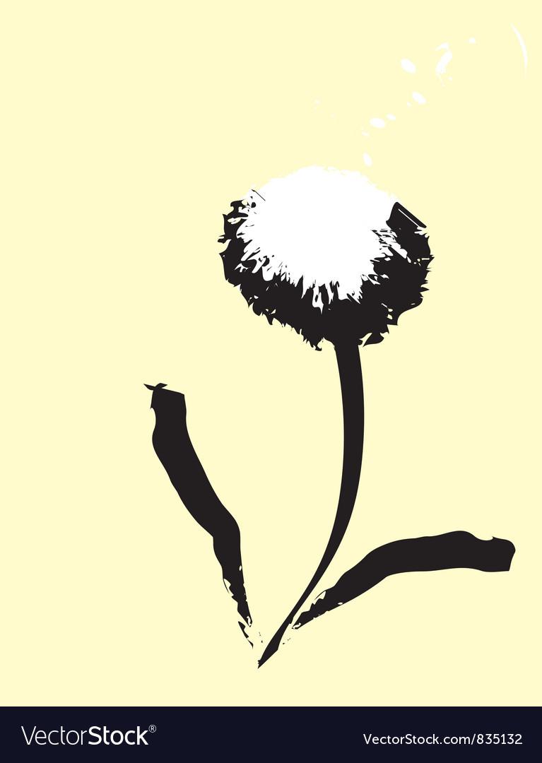 Common dandelion vector image