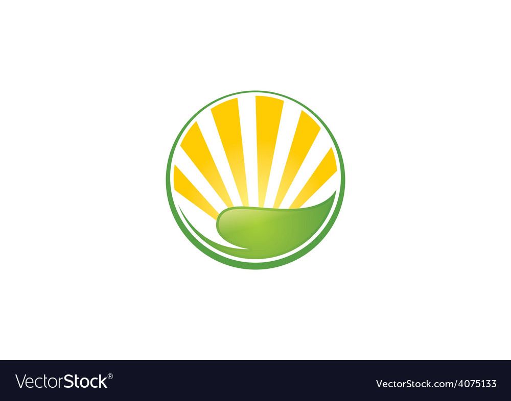 Leaf sun ecology abstract logo vector image