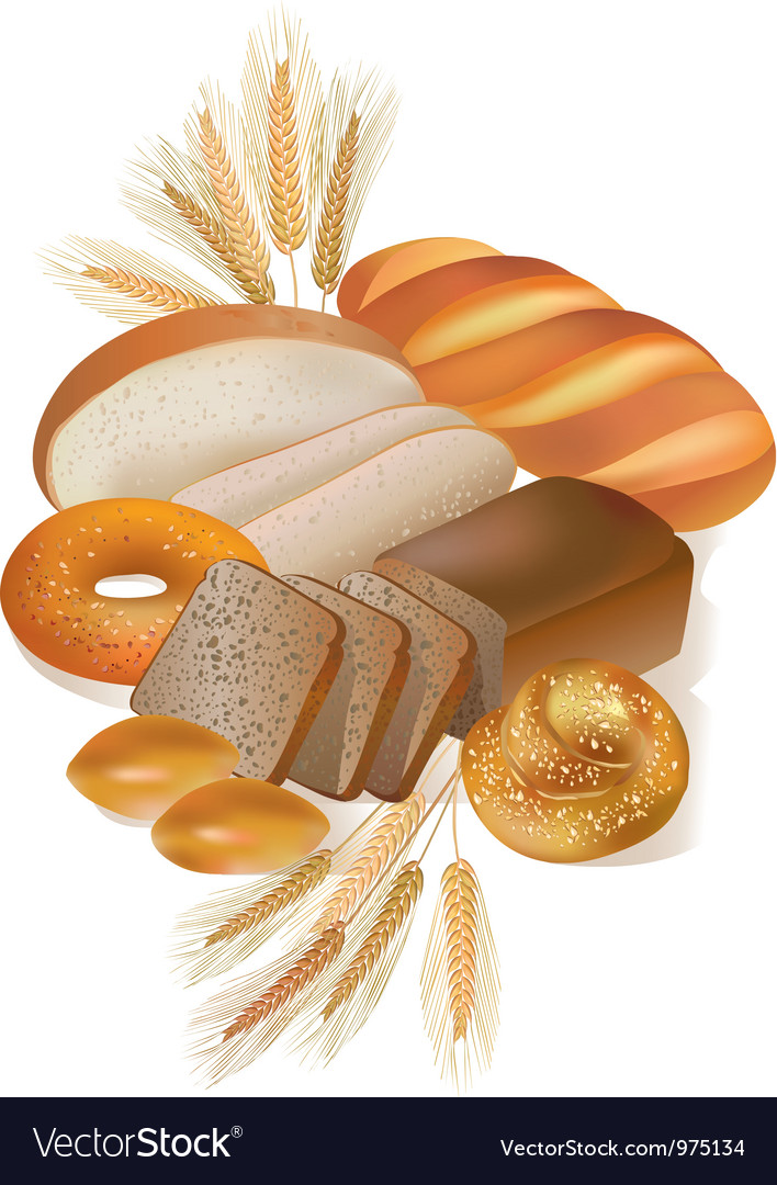 Bread and bakery products vector image