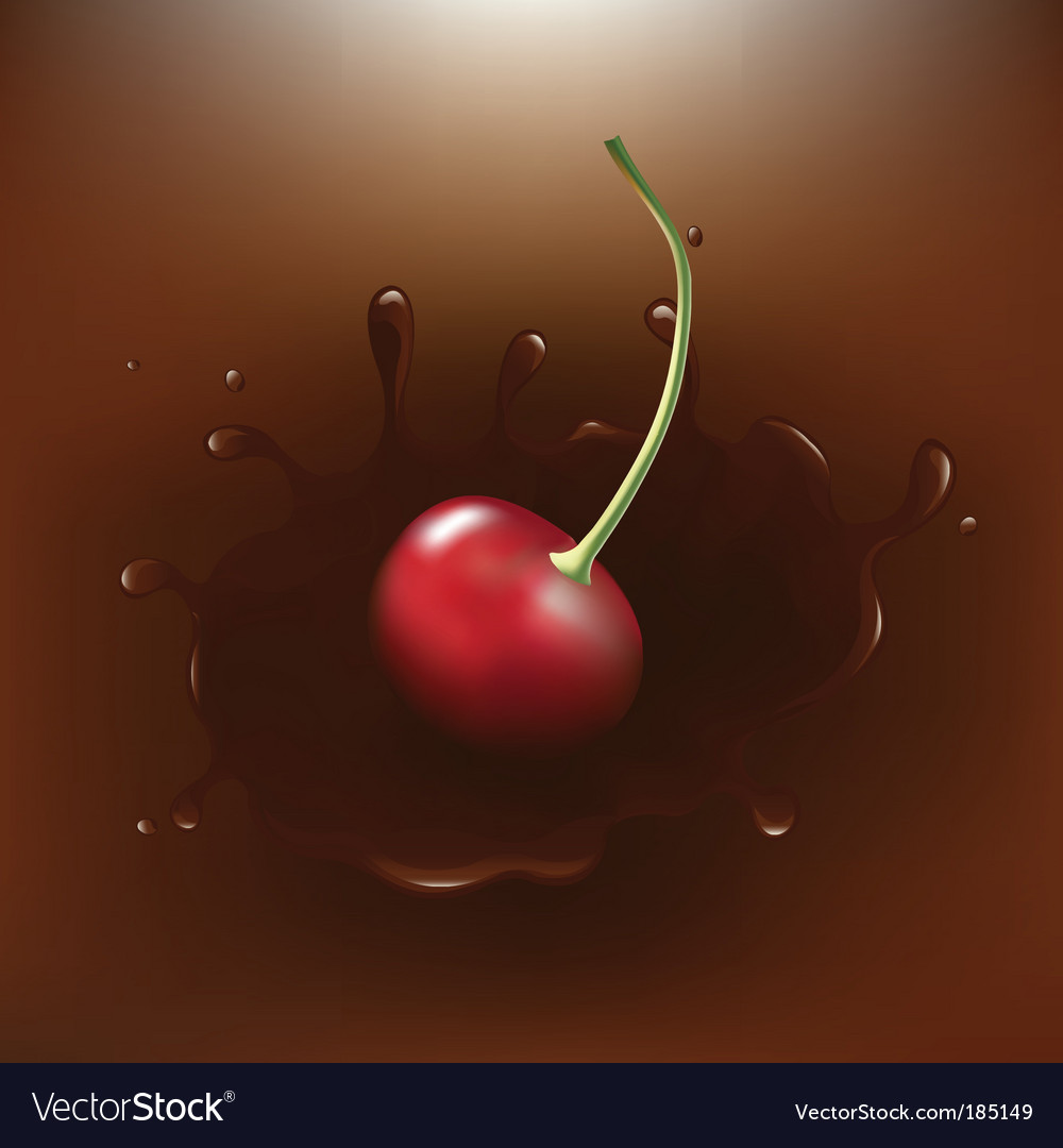 Chocolate dipped cherry vector image