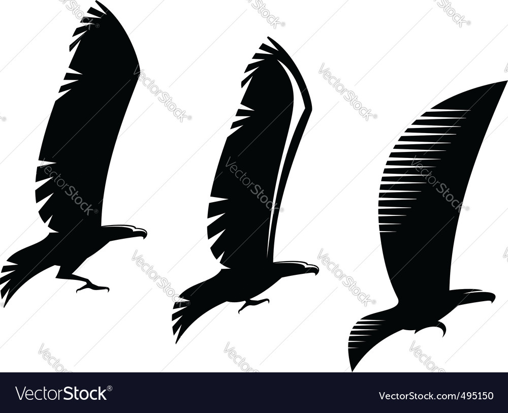 Heraldry eagle symbols and tattoo vector image