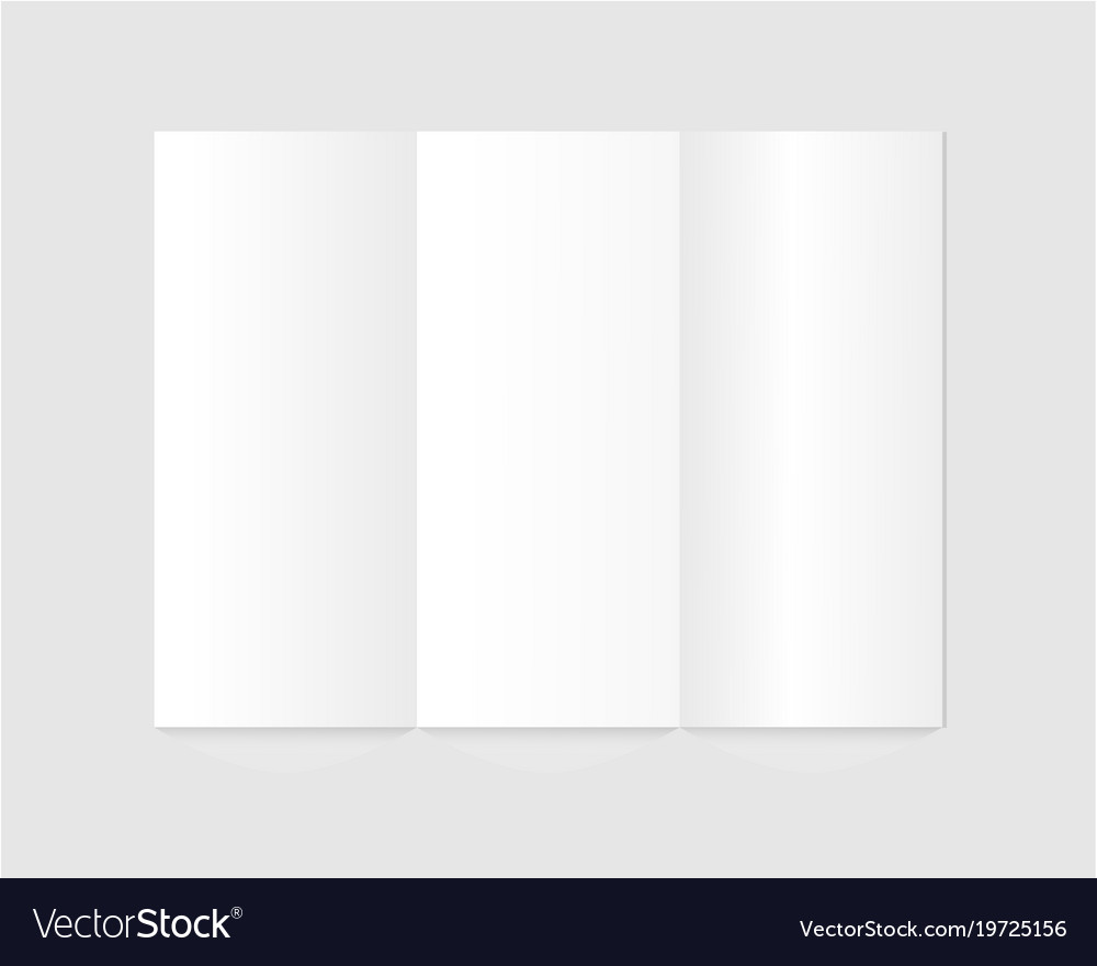 Blank trifold paper brochure on gray background vector image