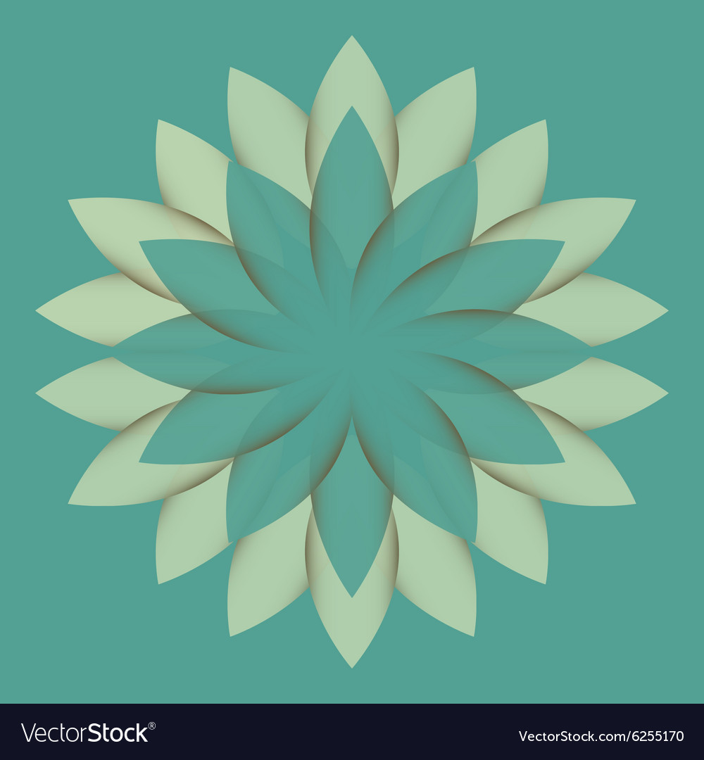 Beautiful Lotus Flower Color Wheel Mandala Vector Image