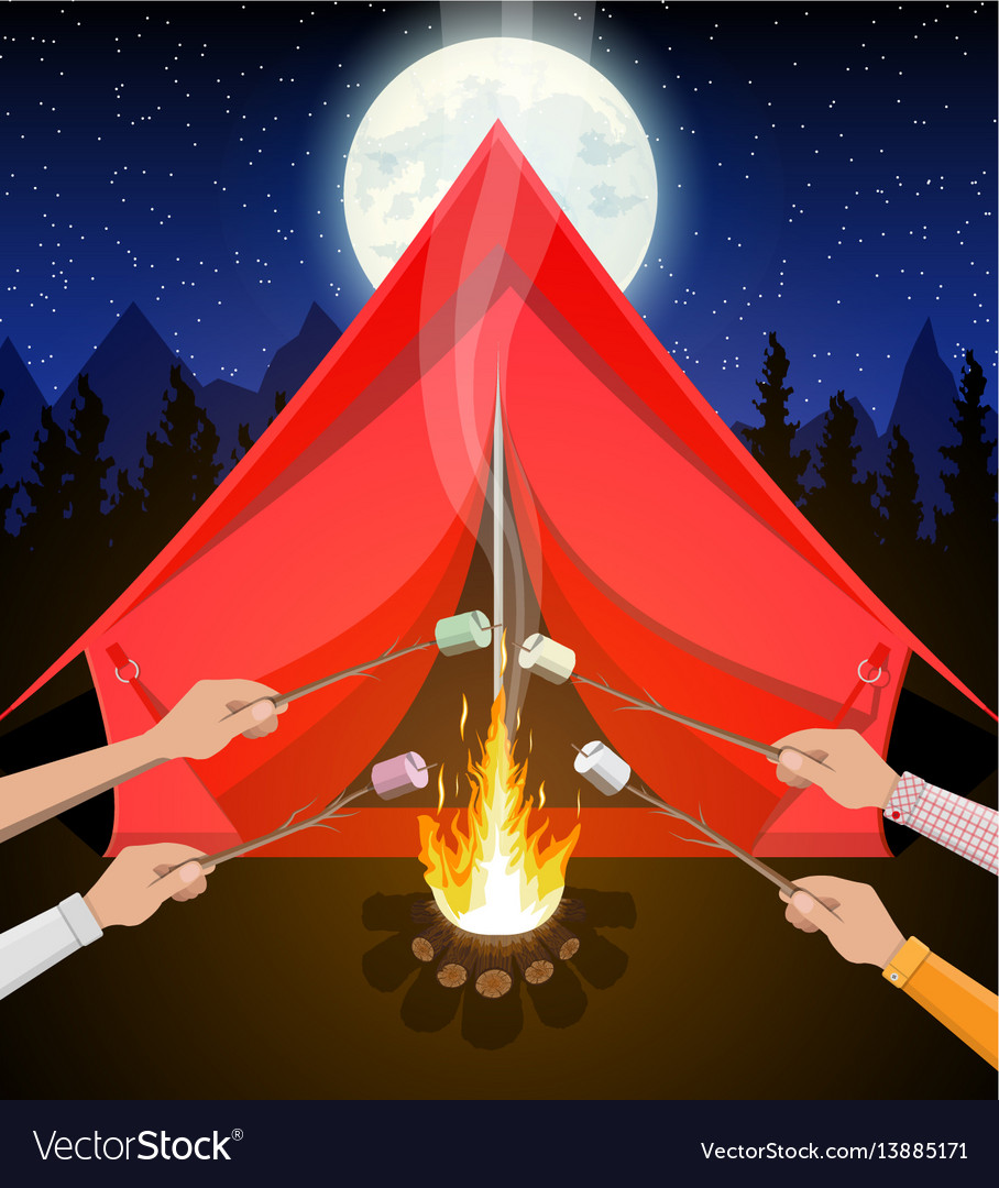Bonfire with marshmallow logs and fire vector image