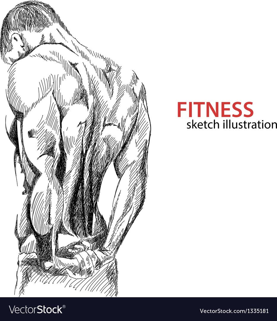 Athletic mans back vector image