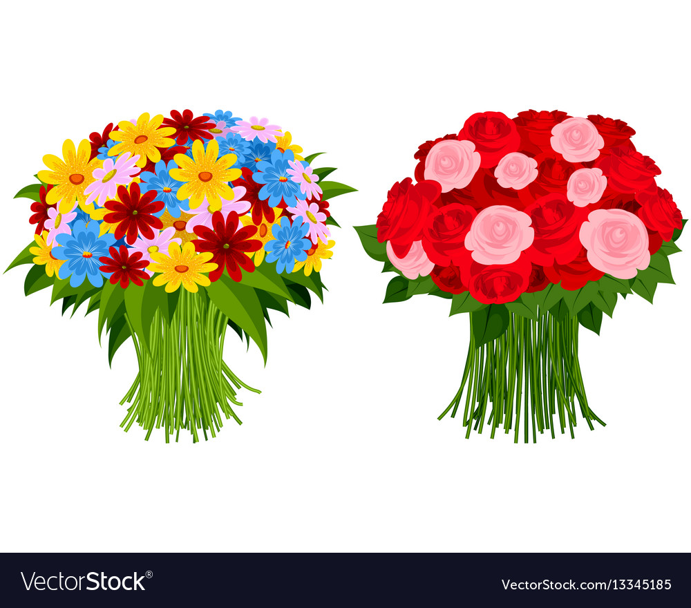 Two bouquet of flowers vector image