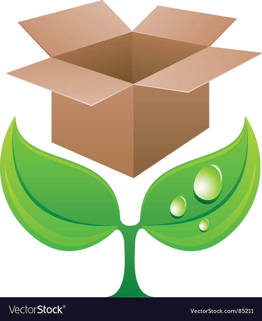 Sprout with box vector image