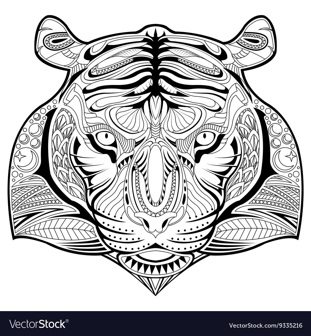 hand drawn tiger coloring page royalty free vector image