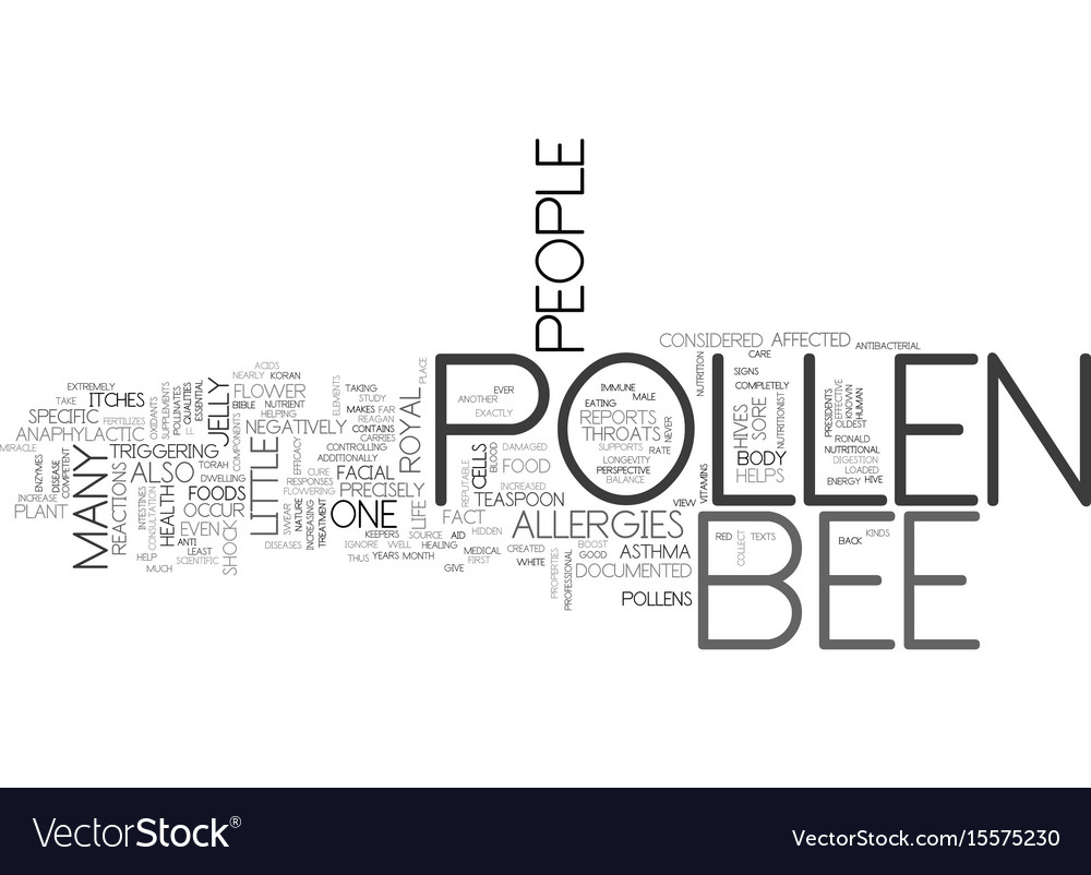 Bee pollen a medical miracle text word cloud vector image