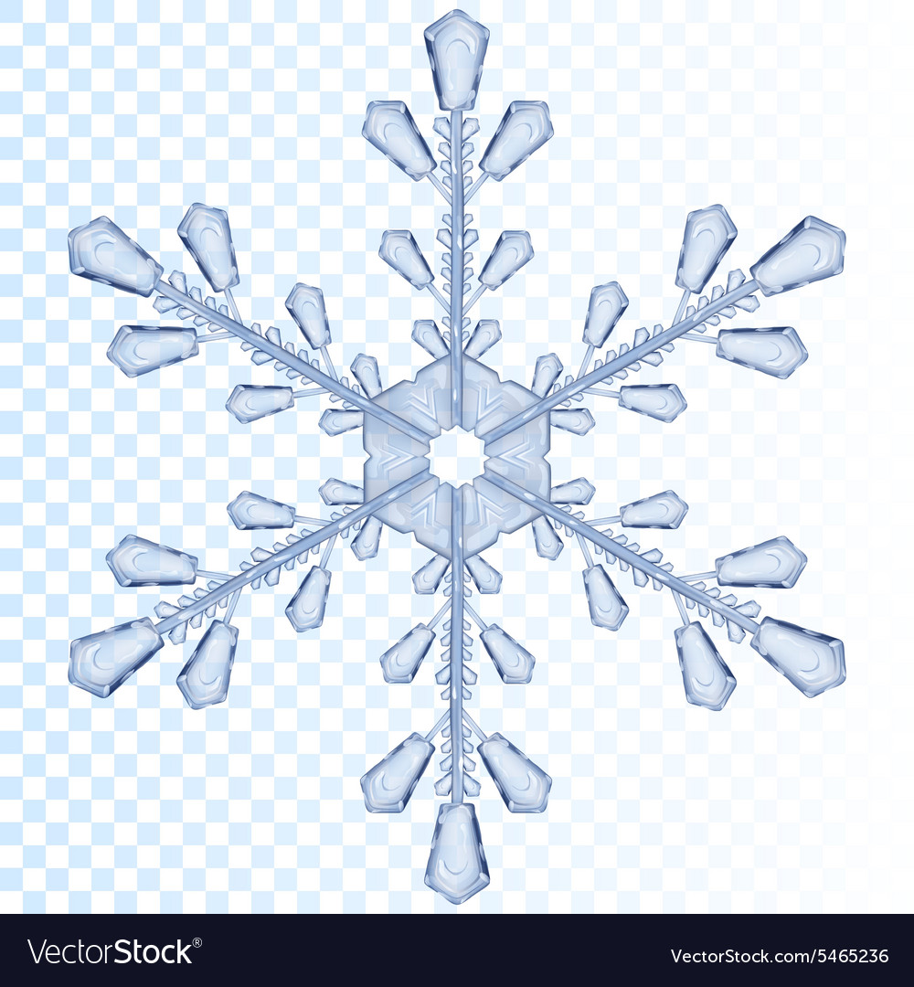 transparent snowflake royalty free vector image