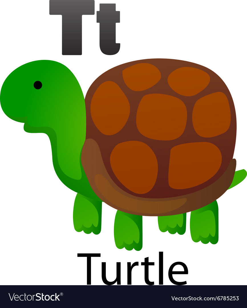 Alphabet T With Turtle Royalty Free Vector Image