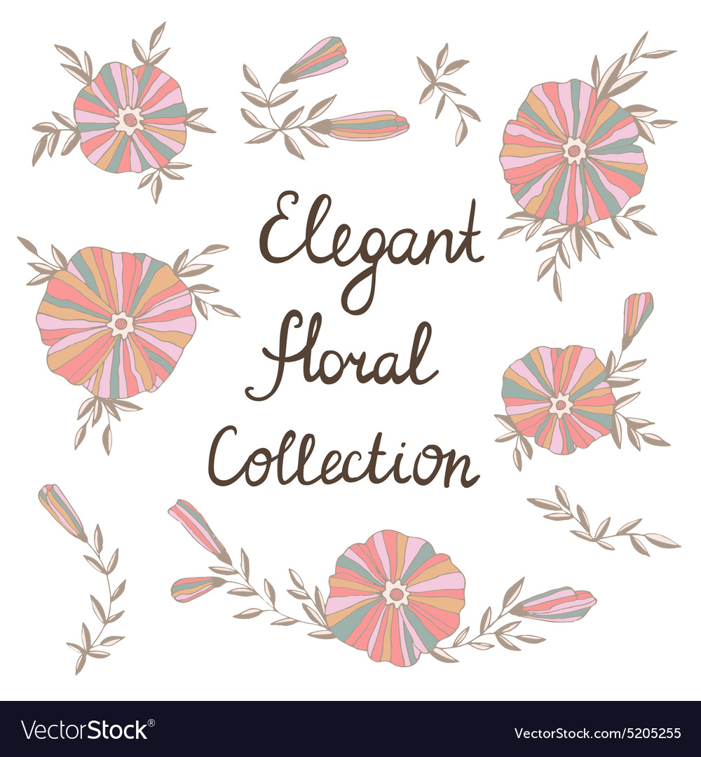 Elegant flowers in Cute floral elements Vintage vector image