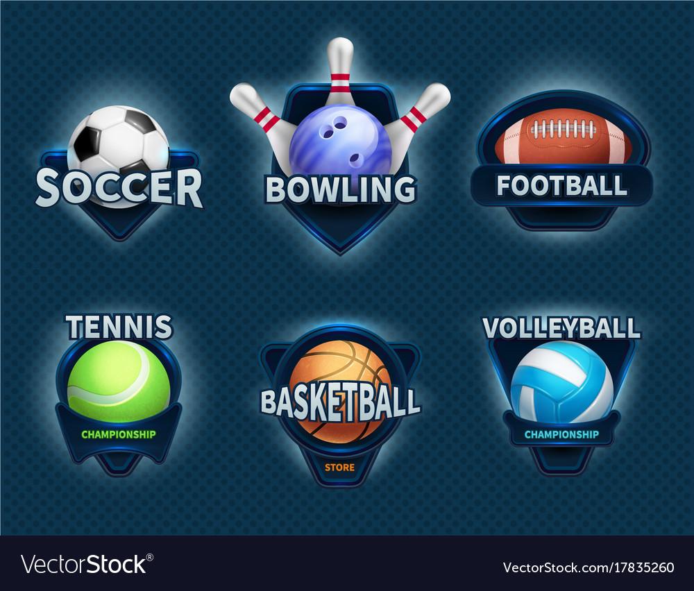 Sports balls labels and sport team emblems vector image