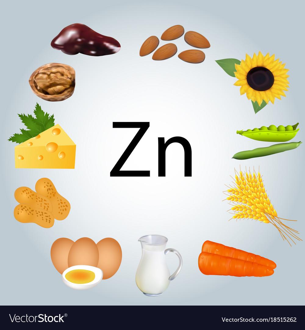 Food rich in zinc healthy eating royalty free vector image food rich in zinc healthy eating vector image buycottarizona Gallery