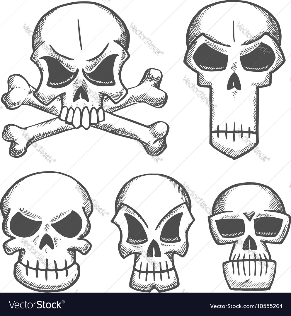 Skulls and craniums with crossbones icons vector image