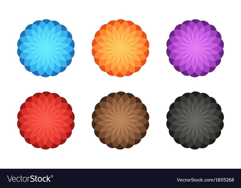 Colorful foto logo 6in1 vector image