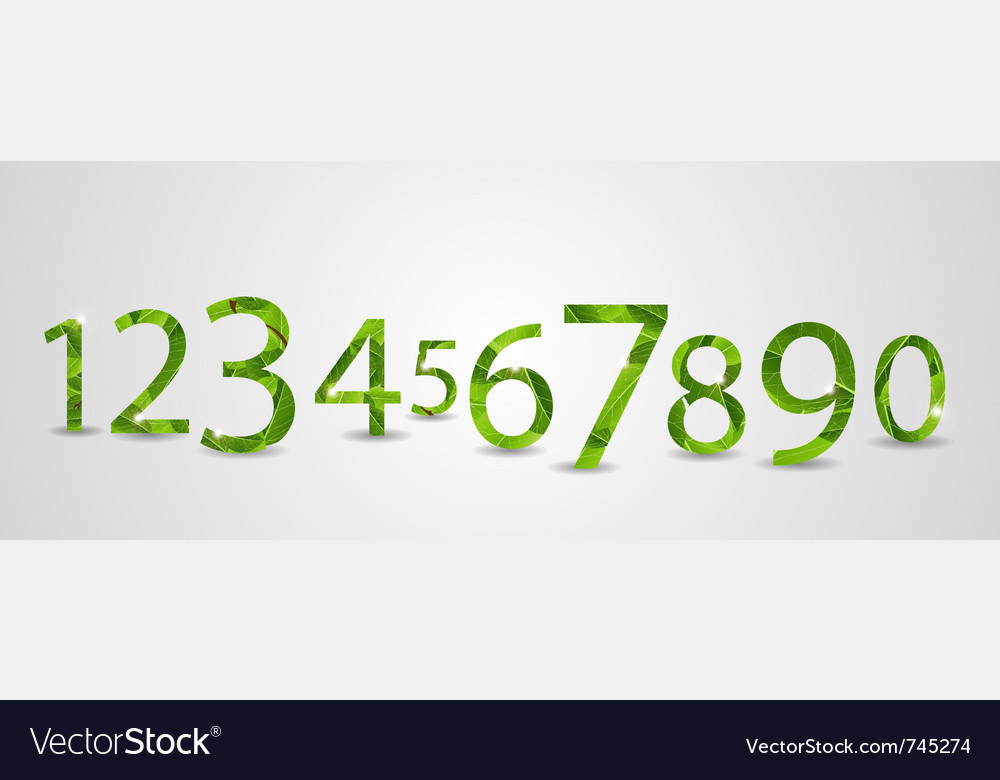 Number leaves vector image