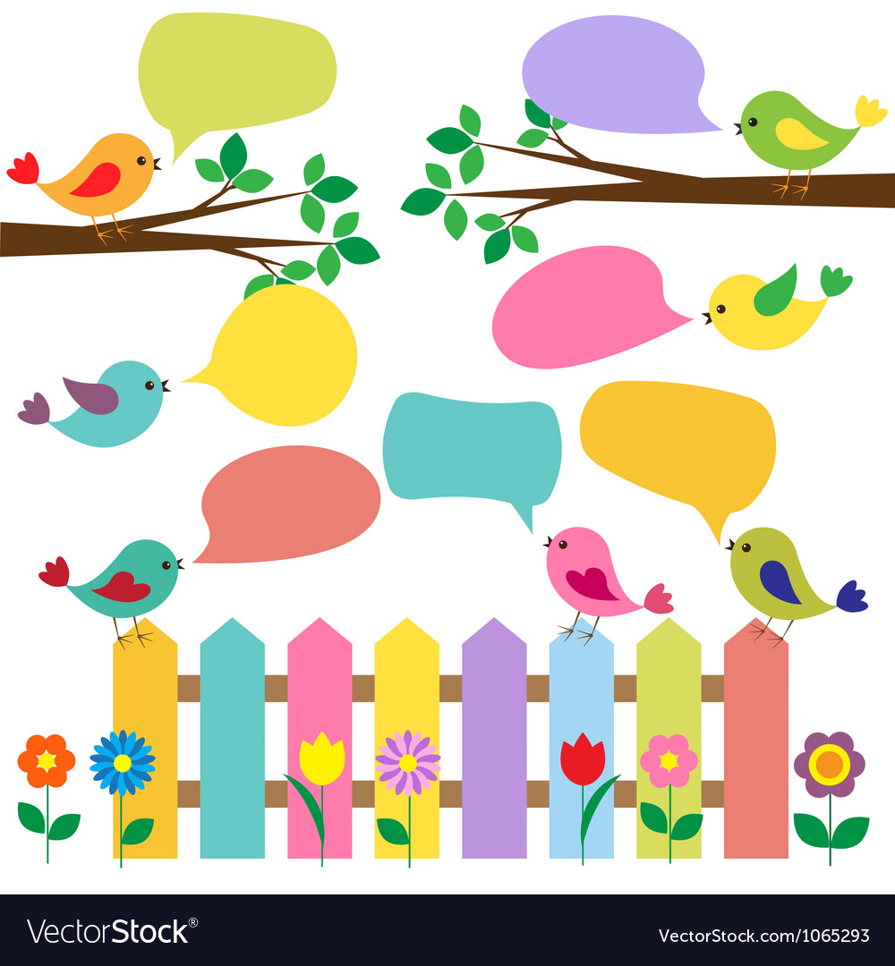 Colorful birds with bubbles for speech vector image