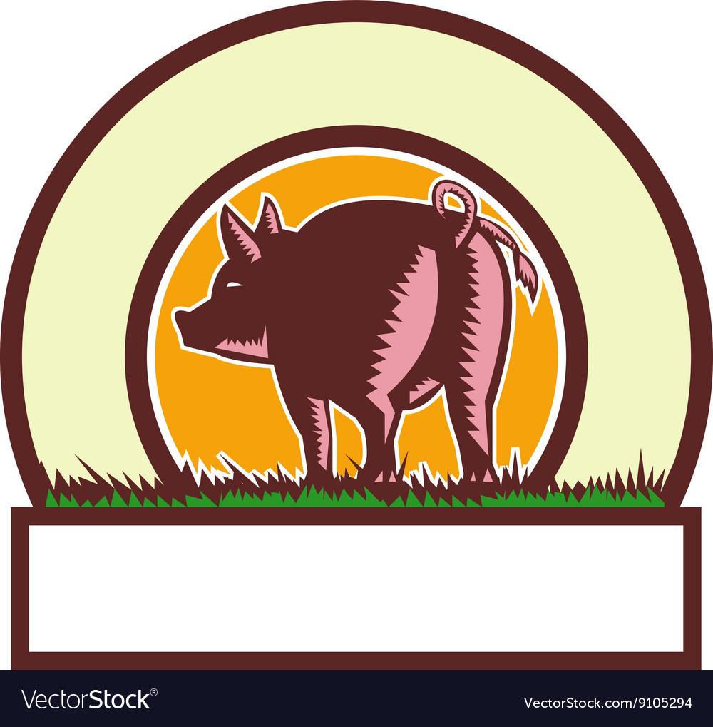 Pig Tail Rear Circle Woodcut vector image