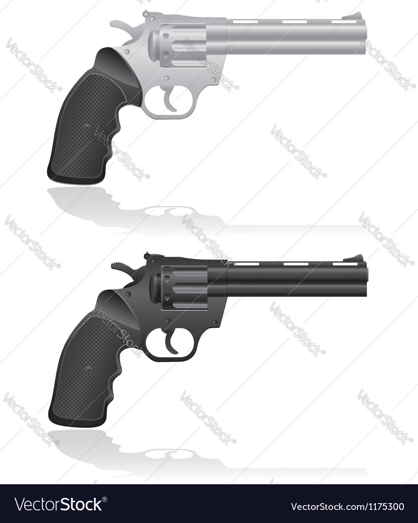 Silver and black revolvers vector image