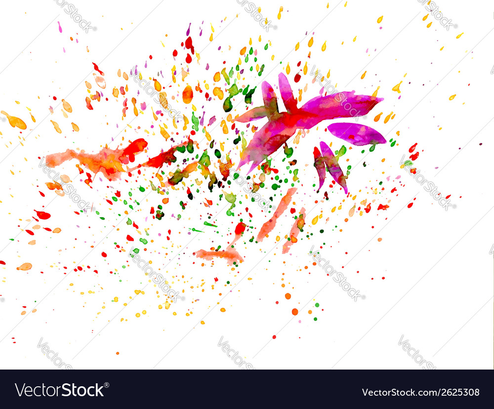 Brush strokes and paint splashes vector image