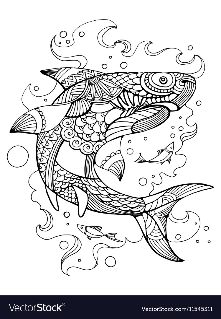 Shark coloring book for adults Royalty Free Vector Image