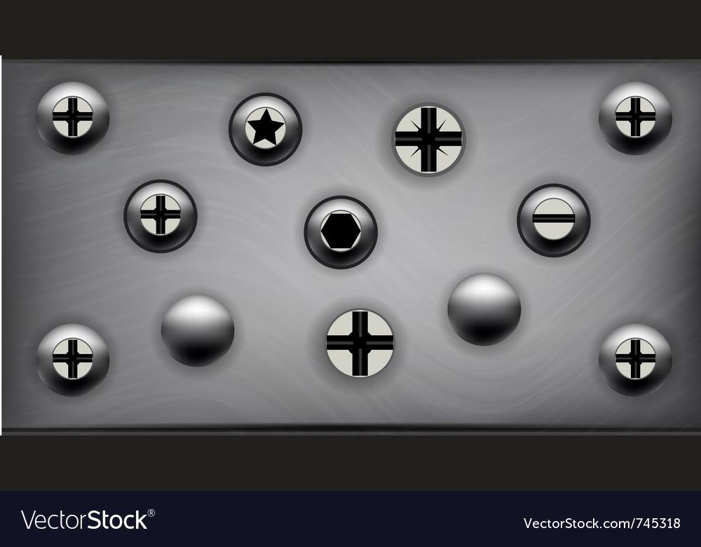Screws on metal plate vector image