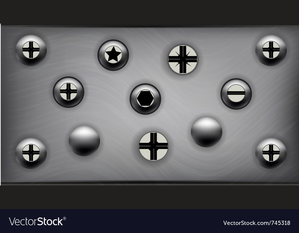 Screws on metal plate vector image