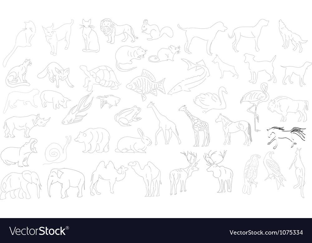 Rough animals Vector Image
