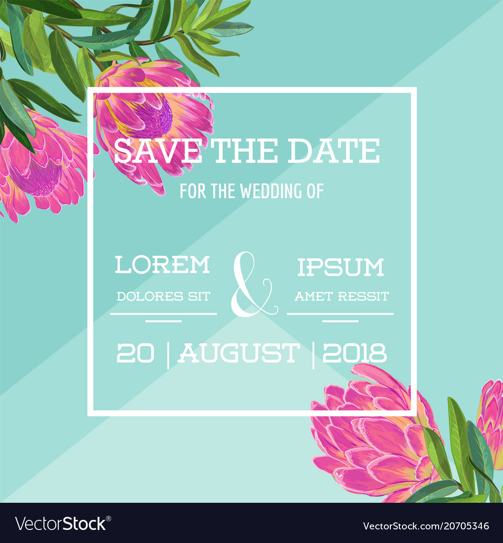 Wedding invitation template with protea flowers vector image stopboris Choice Image