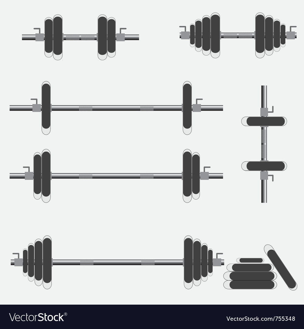 Barbells and dumbbells vector image