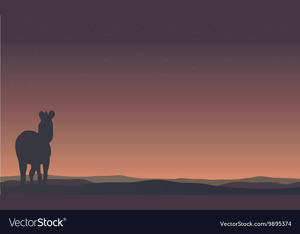 Landscape zebra silhouettes in hills vector image