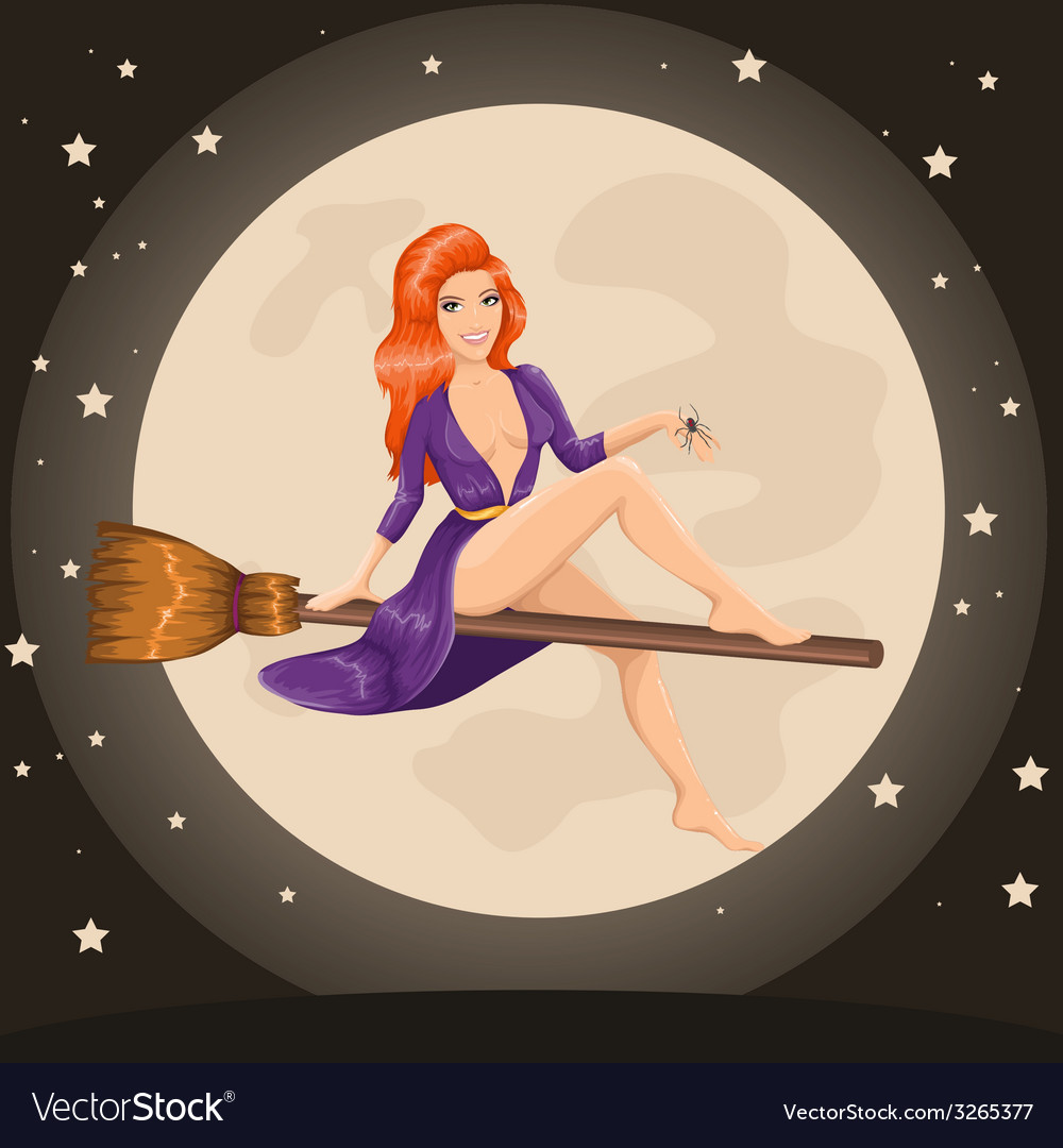 Cute sexy redhead witch flying on a broom vector image