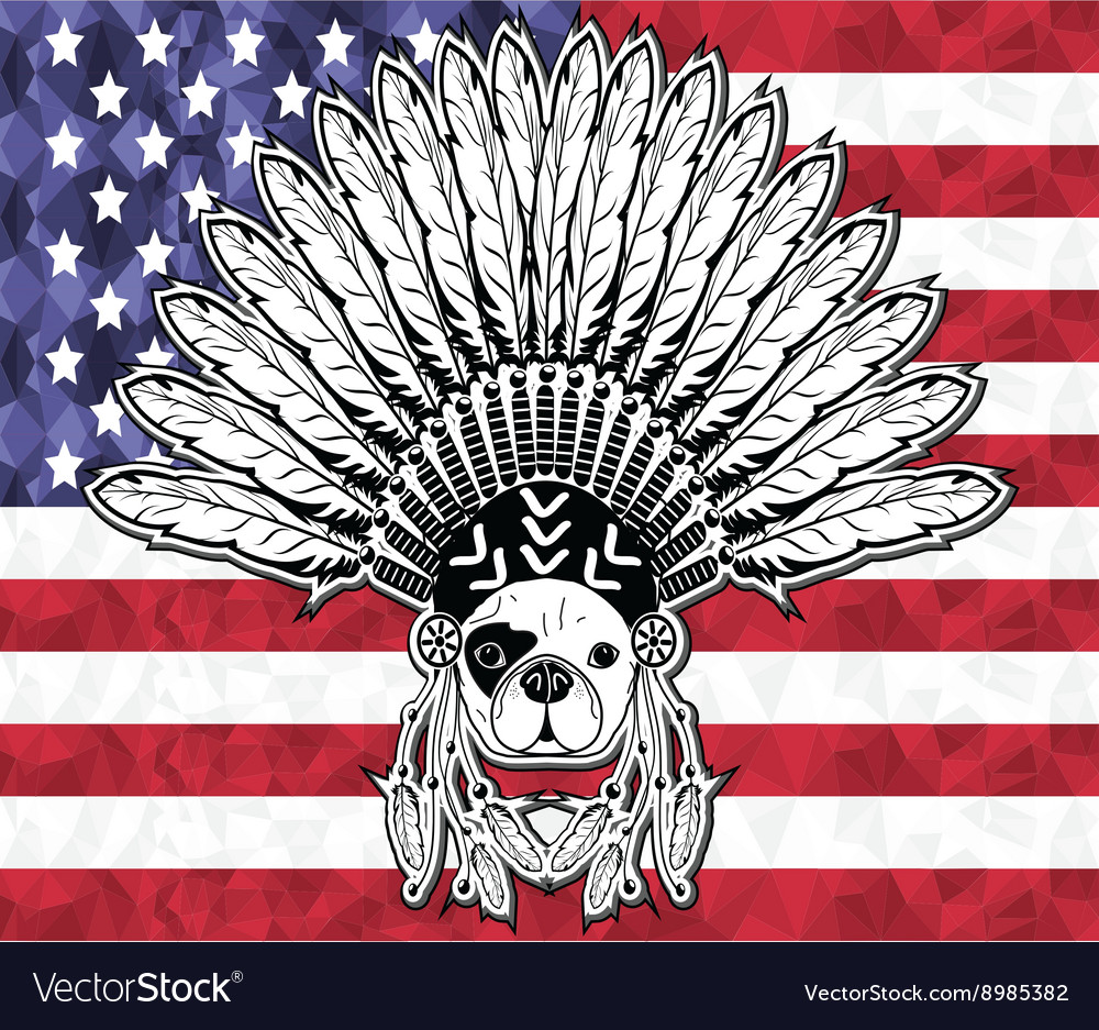 Native American French bulldog on USA flag vector image