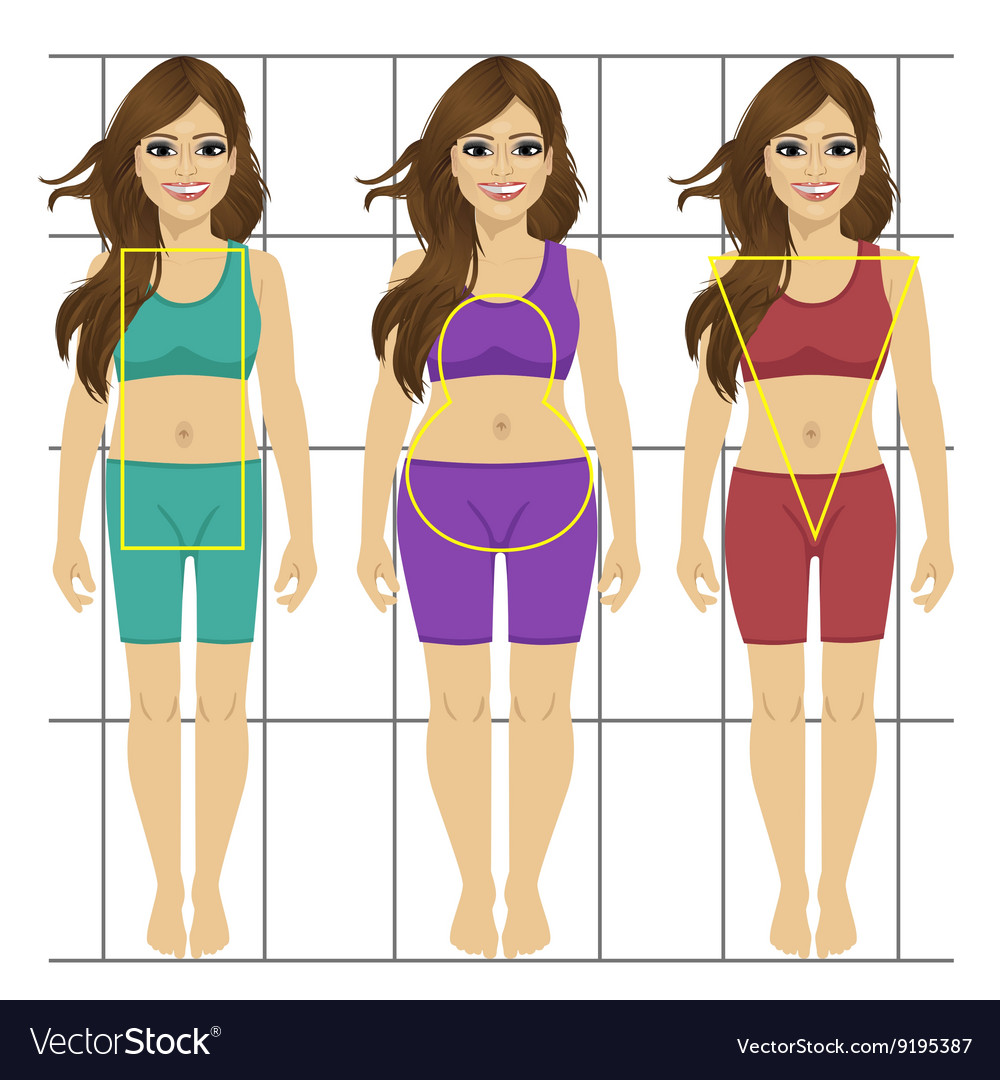 Different Women S Figures Three Female Body Types Vector Image-3797