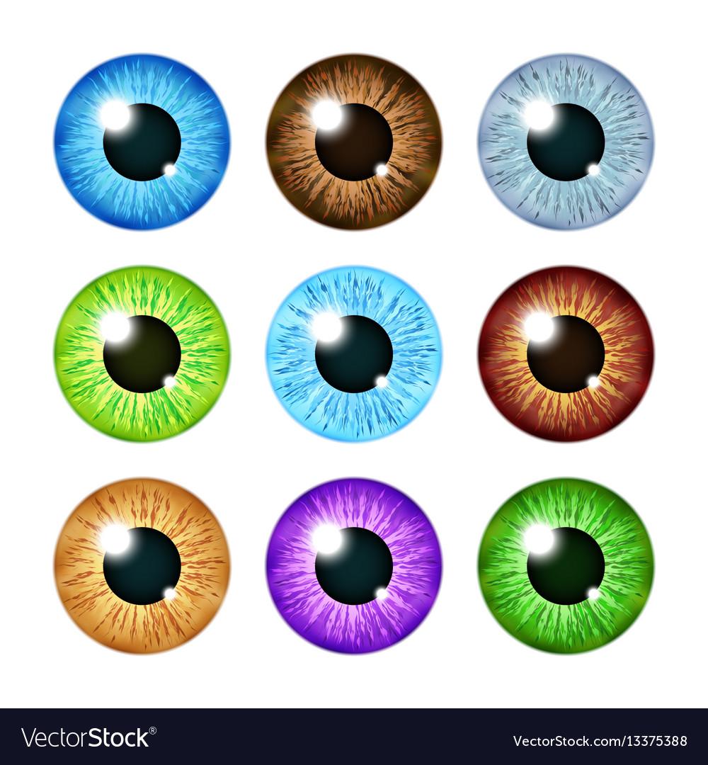 Realistic multi colored eyeball iris pupils set vector image