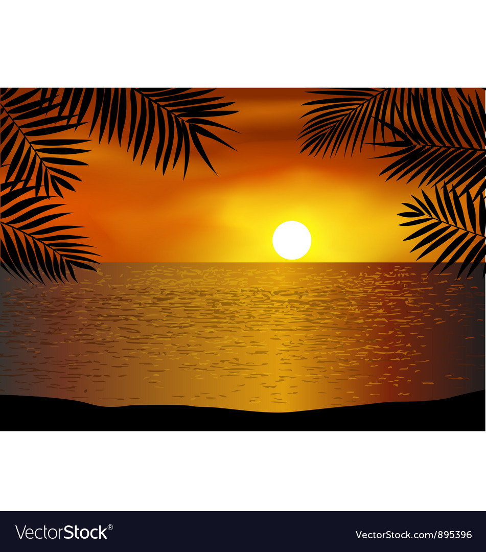 Tropical beach background vector image