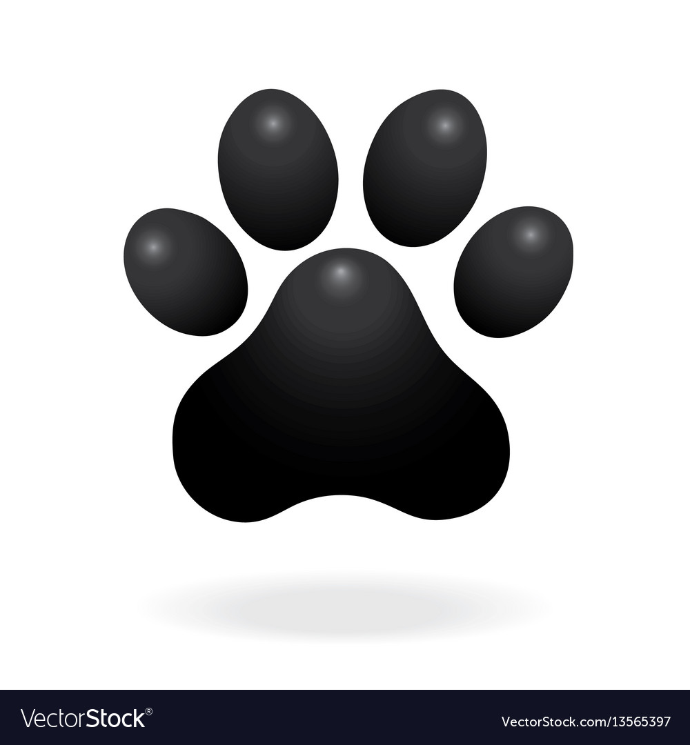 Dog or cat paw print flat icon for animal apps vector image