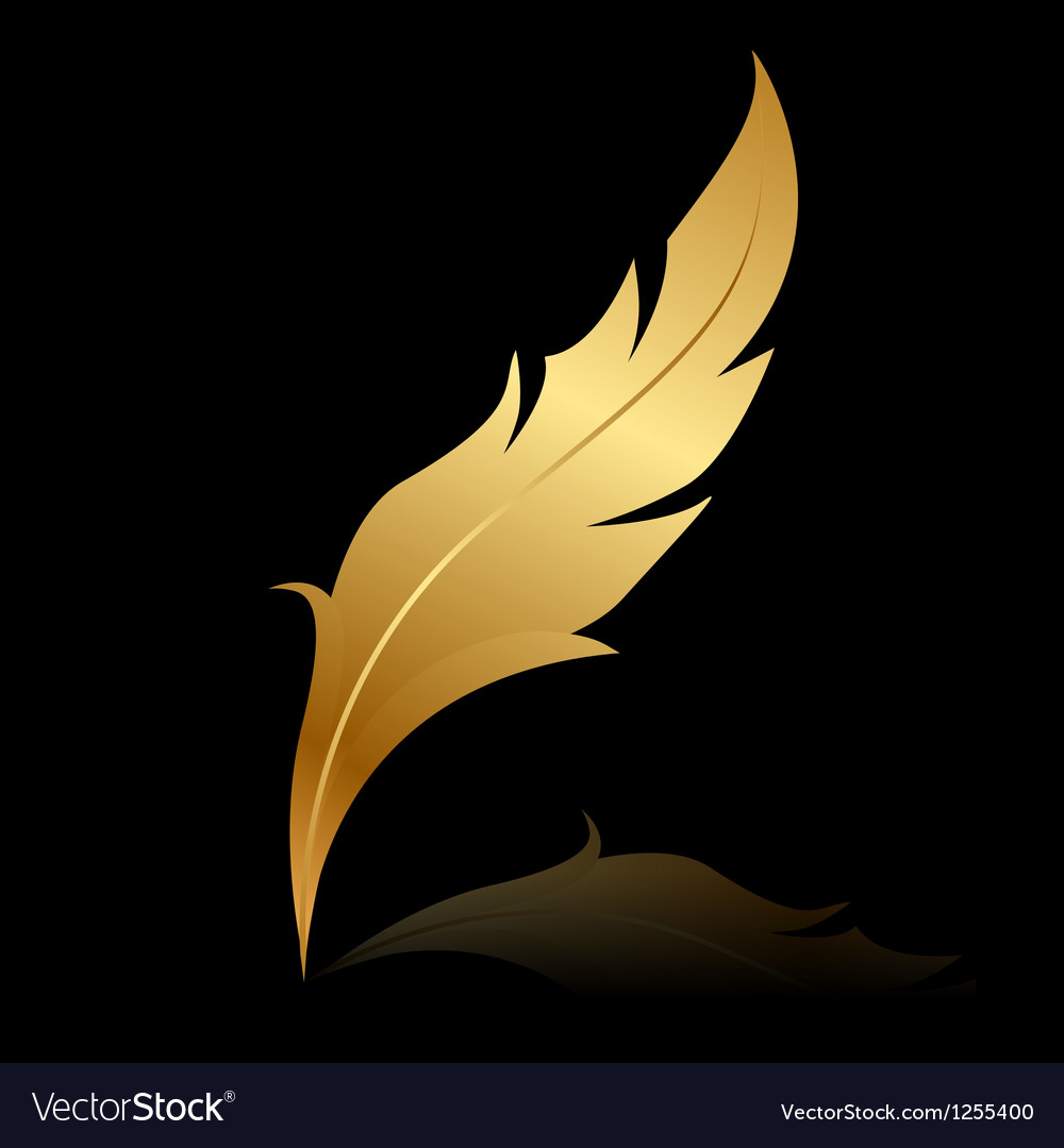Golden feather on black vector image